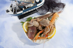 Mix of fresh fish Stock Photography