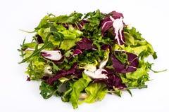 Mix of fresh lettuce on white background. Studio Photo Stock Photo