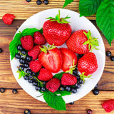 Mix of fresh, ripe berries in plate on wooden background. Royalty Free Stock Photos