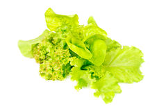 Mix fresh salad isolated ower white Stock Photo