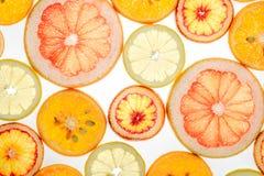 Mix of fresh transparent citrus fruits on white. Luminous background Stock Image