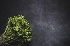 Mix of fresh vegetables Royalty Free Stock Photos
