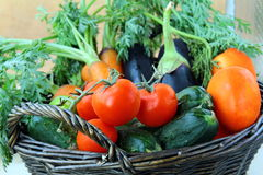 Mix fresh vegetables  in a black wicker basket Royalty Free Stock Photography