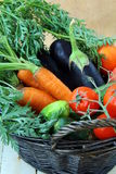 Mix fresh vegetables  in a black wicker basket Royalty Free Stock Photos