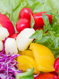Mix Fresh Vegetables. Royalty Free Stock Images