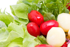 Mix Fresh Vegetables. Royalty Free Stock Photo