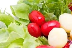Mix Fresh Vegetables. Royalty Free Stock Photo