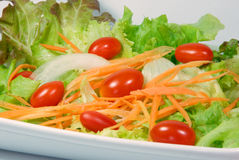 Mix fresh vegetables. Mix fresh vegetable salad on white stock image