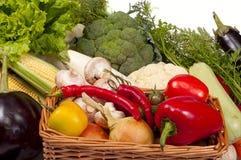Mix of fresh vegetables Stock Photos