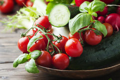 Mix of fresh vegetables on the wooden table. Selective focus Royalty Free Stock Image