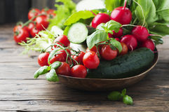 Mix of fresh vegetables on the wooden table. Selective focus Royalty Free Stock Images