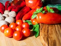 Mix of freshly picked vegetables and spices stock photography