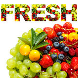 Mix of fruits and berries Stock Image