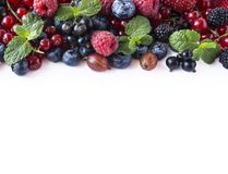Mix fruits berries isolated on white background. Ripe currants, raspberries, blueberries, gooseberrie, blackberries with a mint le. Af. Sweet and juicy fruits Royalty Free Stock Images