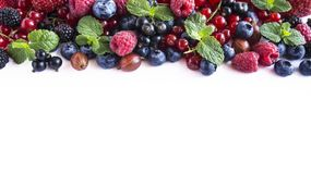 Mix fruits berries on white background. Ripe currants, raspberries, blueberries, gooseberrie, blackberries with a mint leaf. Sweet. And juicy fruits with copy Royalty Free Stock Image