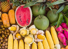 Mix fruits(corn, papaya, Grapefruit, watermelon, Dragon fruit.) Stock Images