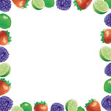 Mix fruits frame Stock Photography