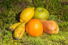 Mix of fruits. Mix of some fresh fruits of season Stock Image