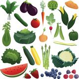 Mixed Garden Fruits and Vegetables royalty free illustration