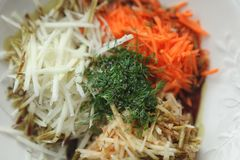 Mix of grated vegetables on white plate. Mix of grated carrot, apple, dill and kohlrabi for salad in white plate Stock Photography