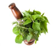 Mix herbs Royalty Free Stock Photos