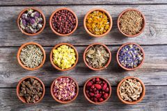 Mix of herbs. Nature medicine . Mix of herbs in bowl Stock Image