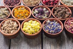 Mix of herbs Royalty Free Stock Photo