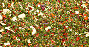 Mix of herbs and spices. Forming a background pattern. Traditional mediterranean Italian seasoning mixture royalty free stock photo