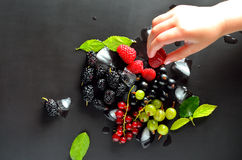 Mix of ice and fresh berries Stock Images