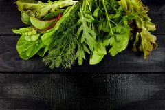 Mix leaf salad on black table. Flat lay. Copy space. Lettuce, mangold, parsley, dill, arugula Healthy diet Clear food Vegan stock images