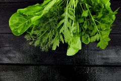 Mix leaf salad on black table. Flat lay. Copy space. Lettuce, mangold, parsley, dill, arugula Healthy diet Clear food Vegan stock photos