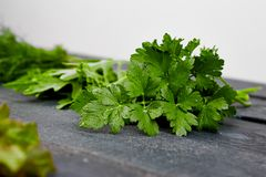 Mix leaf salad on black table. Flat lay. Copy space. Lettuce, mangold, parsley, dill, arugula Healthy diet Clear food Vegan stock photo