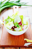 Mix leafy lettuce for salad Royalty Free Stock Photos