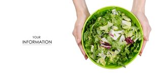 Mix of lettuce leaves in a bowl in hands pattern. On a white background isolation, top view Stock Image