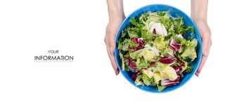 Mix of lettuce leaves in a bowl in hands pattern. On a white background isolation, top view Royalty Free Stock Images