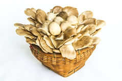 Mix mushroom in bamboo basket Royalty Free Stock Photography