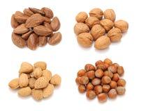 Mix of nut Stock Photo