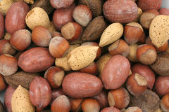 Mix nuts. Close up shot, hazelnuts, brazil nut, almonds, pecan royalty free stock photos