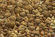 Mix of nuts Stock Photo