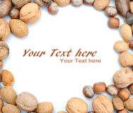 Mix nuts  Royalty Free Stock Image