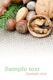 Mix nuts Royalty Free Stock Photography