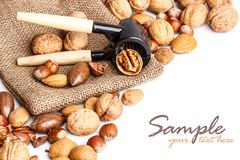 Mix of nuts Royalty Free Stock Photo