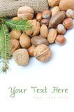 Mix nuts and pine. Isolated on white background stock photography