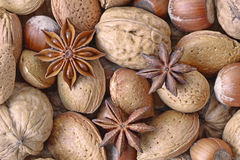 Mix of nuts and star anise. Star anise and mix of nuts walnuts, almonds and hazelnuts Stock Photography