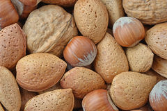 Mix of nuts. Walnuts, almonds and hazelnuts Stock Photography