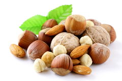 Mix nuts - walnuts, hazelnuts, almonds Royalty Free Stock Photography