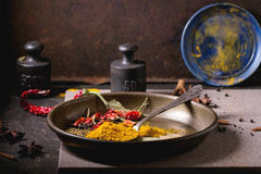Mix Of Spices Stock Photography