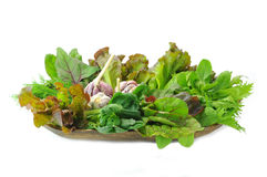 Mix organic salad leaves and garlic. In the wooden bowl Royalty Free Stock Image