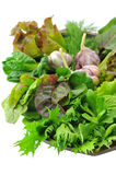 Mix organic salad leaves and garlic. In the wooden bowl Royalty Free Stock Photography