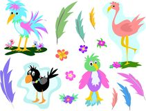 Mix Page of Birds and Feathers Stock Image